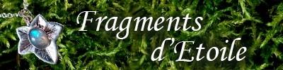 fragments-d-etoile-logo-1458854112